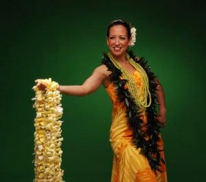 Branding the Hula - Na Lei Hulu
