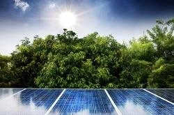 Domestic Solar Brand Needs Repair