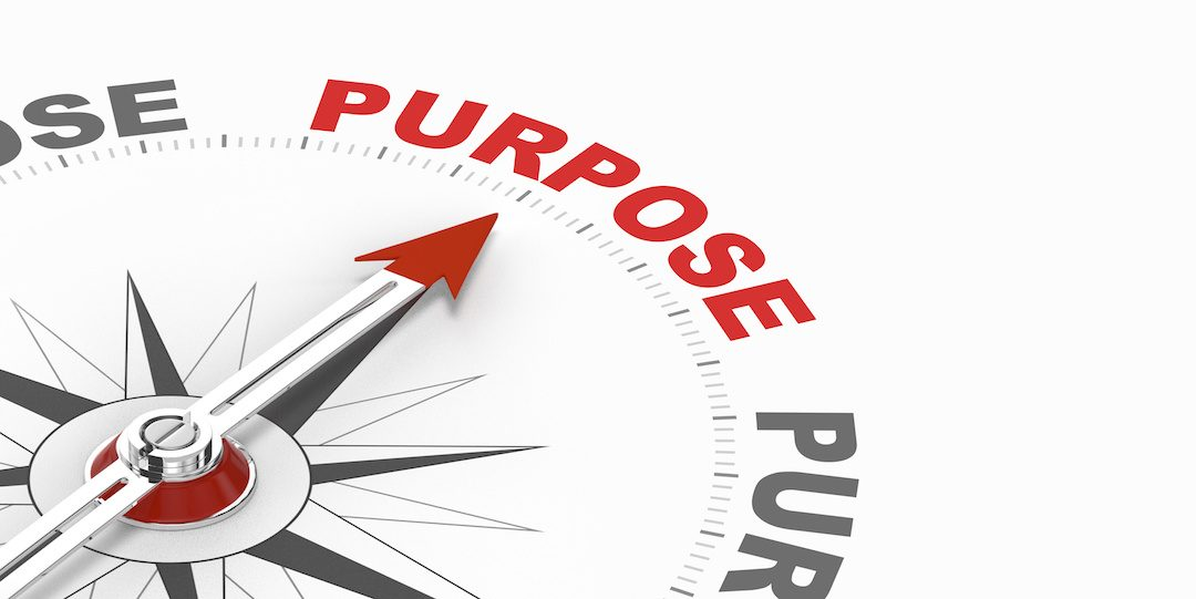 Brand Purpose Gives Your Customers a Social Reason to Buy Your Products